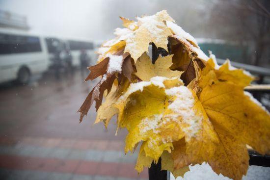 Синоптики попереджають про мокрий сніг. Якою буде погода в Україні 6 жовтня