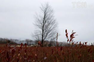 В Украину приближаются холод и дожди. Погода на 21 октября