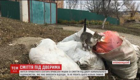 В Кропивницком жители устроили мусорный перформанс