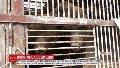 На Закарпатье зоозащитники проведи операцию по спасению трех медведей
