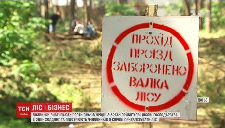 Лесники выступили против намерения Кабмина объединить прибыльные лесные хозяйства в одно предприятие