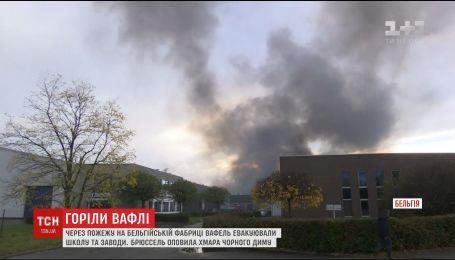 Брюссель огорнув густий дим через пожежу на фабриці із виробництва традиційних вафель