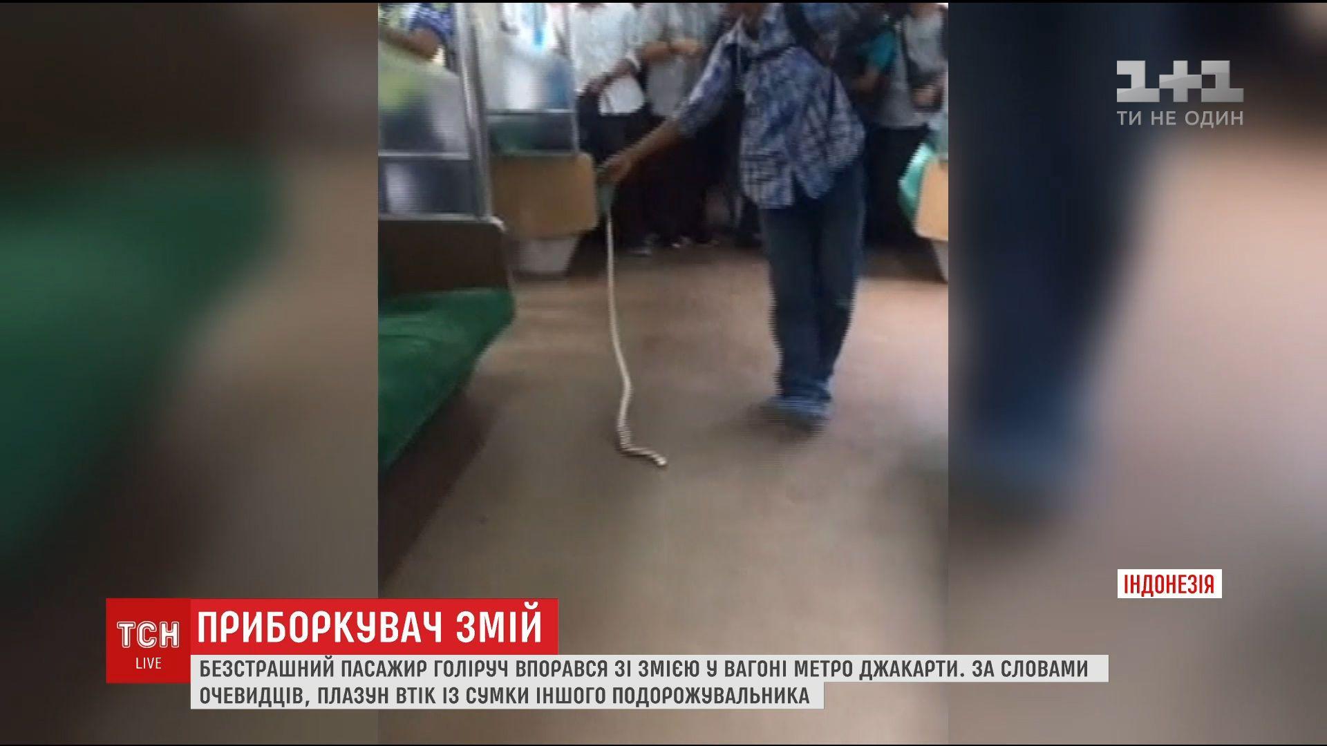 змія в метро Джакарти_1