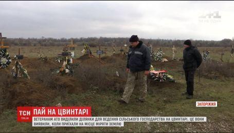Участники АТО не знают, что делать с землей на кладбище, которую им выделили власти
