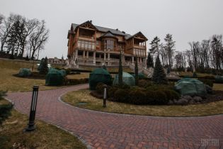 Охоронців Межигір'я налякав приклад вертолітного майданчика Януковича