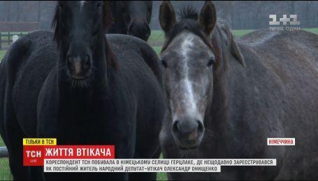 ТСН нашла элитный конный комплекс Онищенко в Германии
