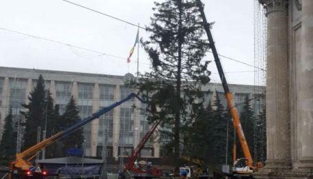 Елочный позор. Главное праздничное украшение Кишинева возмутило жителей Молдовы