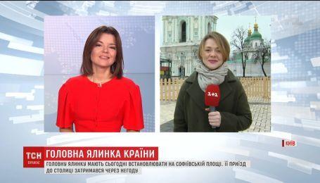 Главную елку Украины везут в Киев несмотря на метель в Карпатах