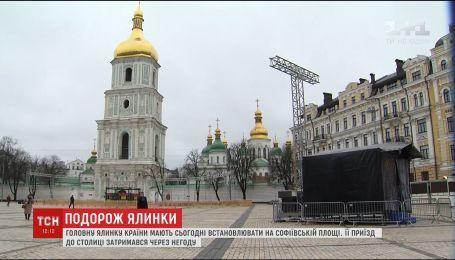 Праздник приближается. 91-летнюю елку из Карпат везут в Киев