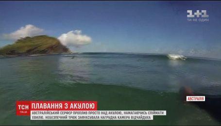 Австралийский серфер проплыл прямо над акулой при попытке поймать волну