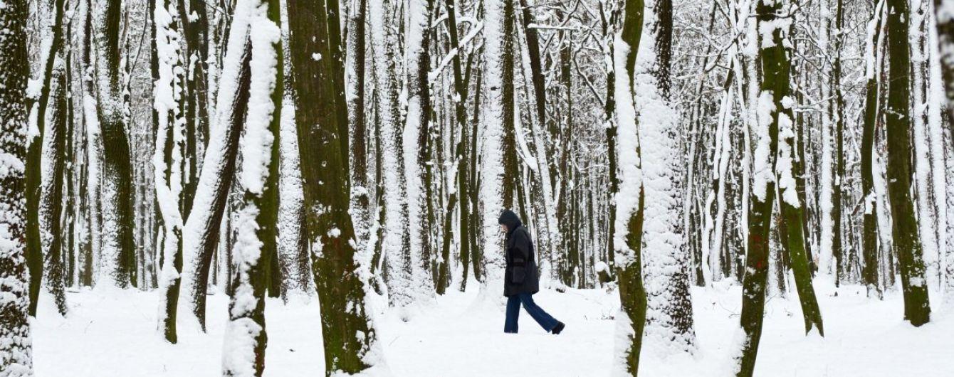 Синоптики обещают снега, дожди и гололедицу. Прогноз погоды на 7-11 декабря
