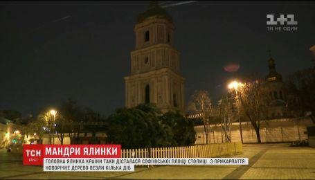 Головна ялинка країни нарешті доїхала до Києва