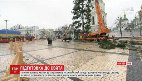 Главную елку уже установили на Софийской площади
