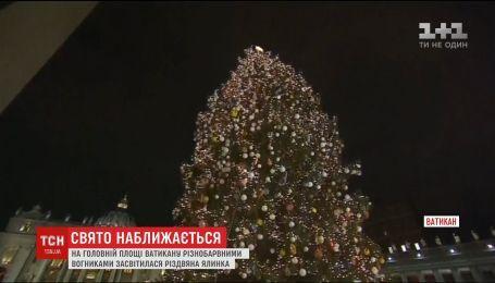 На главной площади Ватикана засветили новогоднюю елку