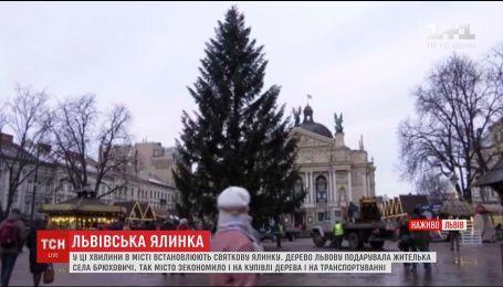 У Львові встановили особливу новорічну ялинку
