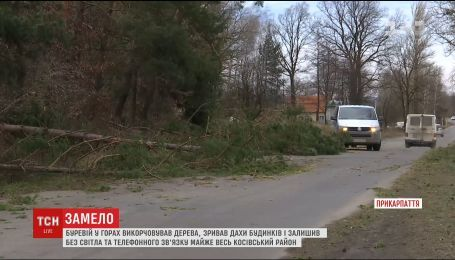 Ураган на Прикарпатье наделал убытков на 5 миллионов гривен