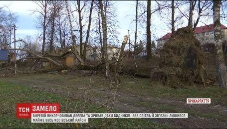 Ураган на на Прикарпатье выкорчевал деревья и сорвал крыши домов