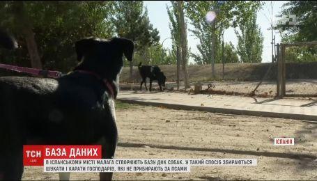 В Іспанії почнуть створення бази ДНК собак, аби за екскрементами шукати їхніх лінивих господарів
