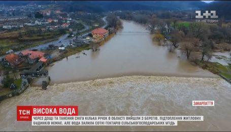 В Интернете обнародовали кадры затопленных дорог на Закарпатье