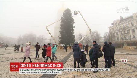 В столице начали украшать новогоднюю елку