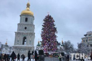 Смотрите вживую трансляцию зажжения главной елки Украины