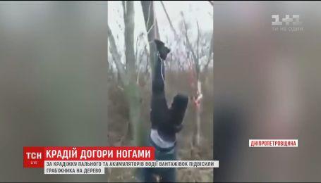 На Дніпропетровщині далекобійники підвісили за ноги на дереві крадія пального