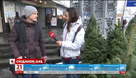 Какие елки выбирают украинцы