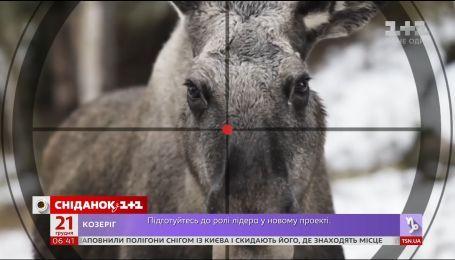 Лося європейського внесли до Червоної книги України