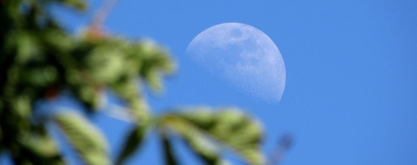 Перша рослина на Місяці: з'явилось відео унікального біологічного експерименту на супутнику Землі