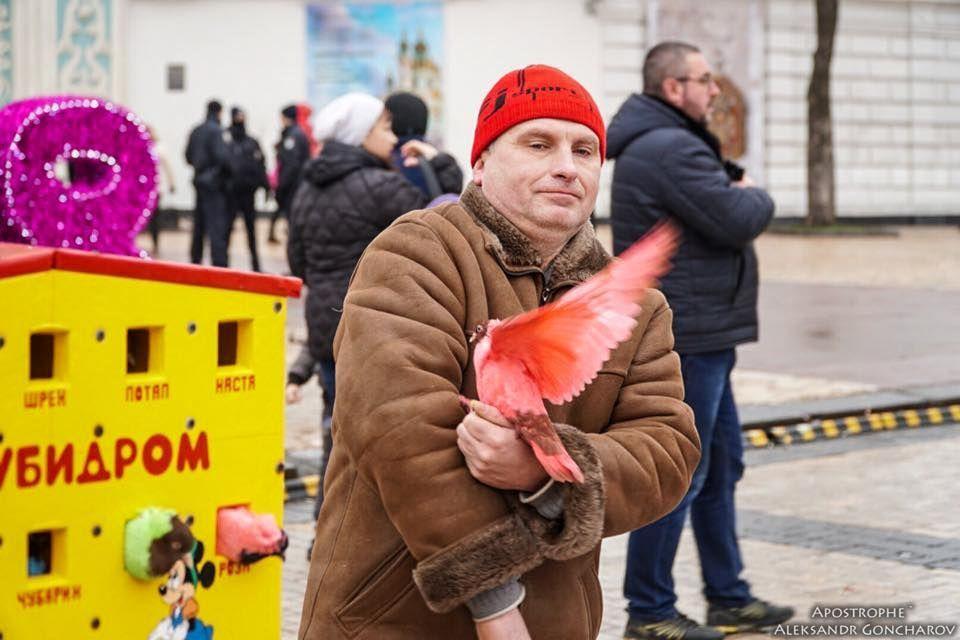 Пофарбовані голуби у Києві