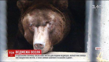 В одесском зоопарке построили элитное жилье для семьи медведей
