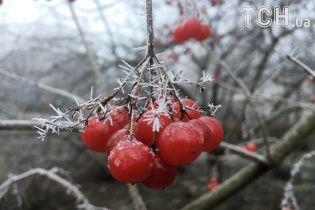 Погода на День святого Валентина: в Украине небольшой мороз, местами осадки