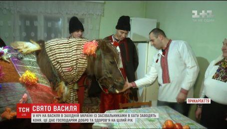 Конь в доме и громкие поздравления: как в селе на западной Украине берегут традиции засеваний на Василия