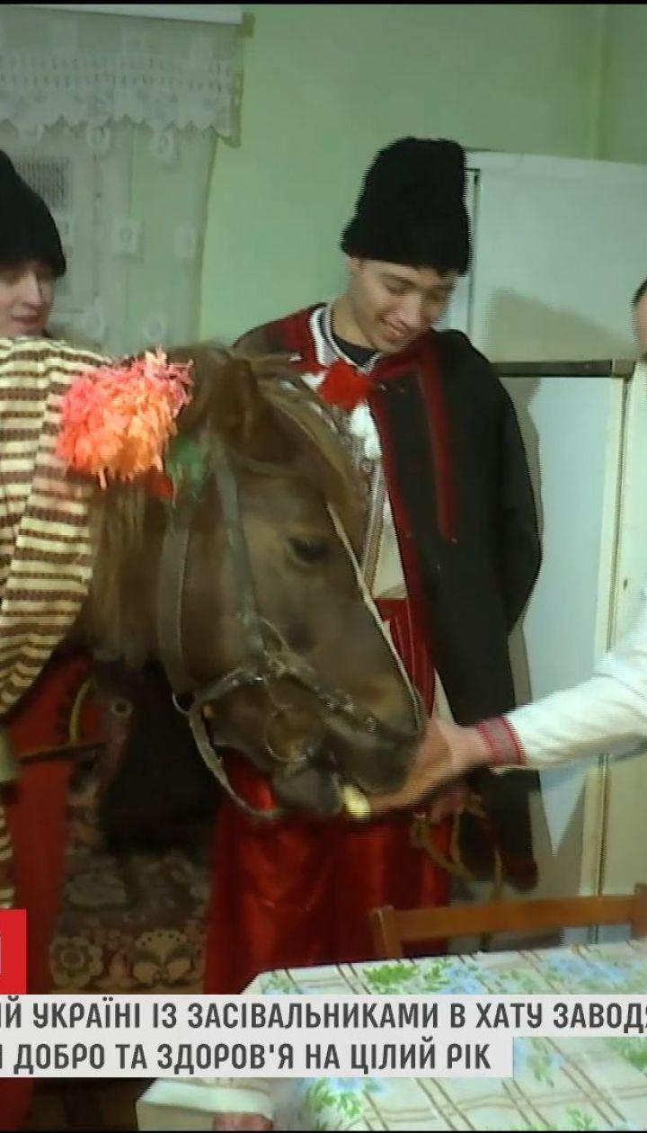 Кінь в хаті та гучні вітання: як у селищі на західній Україні бережуть традиції засівання на Василя