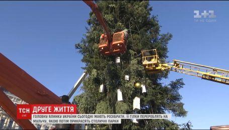 Главную елку страны на Софийской площади публично переработают