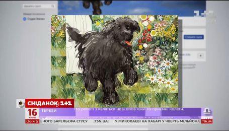 Невиданная жестокость: киевлян шокировало страшное убийство бездомной собаки