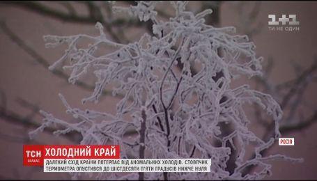 Стовпчик термометра на Далекому сході РФ опустився до –65 градусів
