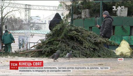 В Киеве убрали и утилизировали главную елку страны