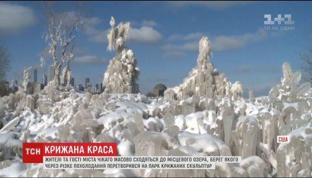 Резкое похолодание в Чикаго превратило берег озера в настоящий парк ледовых скульптур