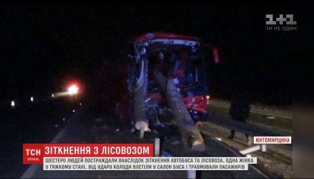 Шесть человек пострадали при столкновении автобуса и лесовоза на трассе Киев-Чоп