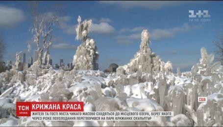 В Чикаго мороз превратил берег озера в парк скульптур