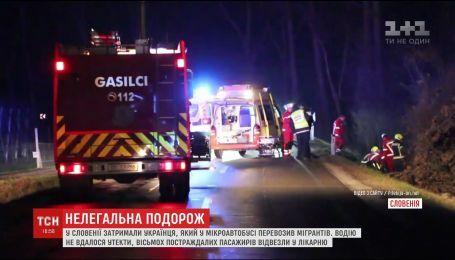 В Словении задержали украинца, который вез двадцати мигрантов из Пакистана