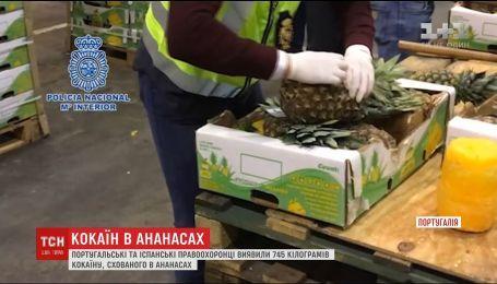 Португальские и испанские правоохранители обнаружили 745 килограммов кокаина, спрятанного в ананасах