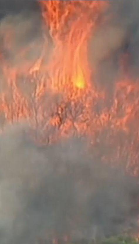 Спасателям пришлось морем эвакуировать 200 туристов из огненной ловушки в Австралии