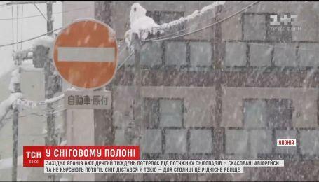 Японія вже другий тиждень страждає від потужного снігопаду