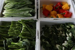 Какие сезонные фрукты и овощи безопасно есть в июле: советы экспертов