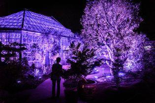 Японцы отказывают иностранным туристам из-за отвратительного поведения