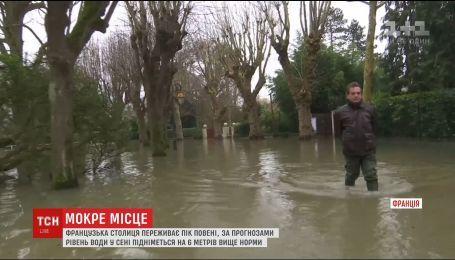 Уровень воды в реке Сене может подняться на шесть метров выше нормы