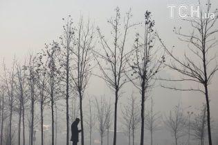 Науковці встановили вплив забрудненого повітря на розумові здібності
