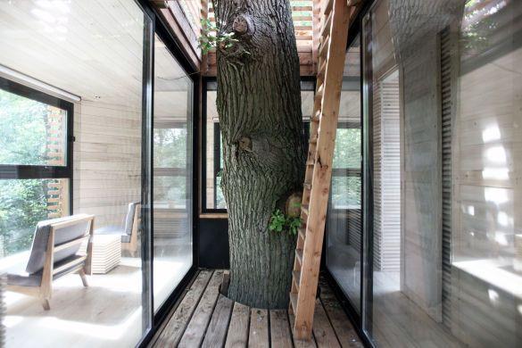 Будинок на дереві, готель_6